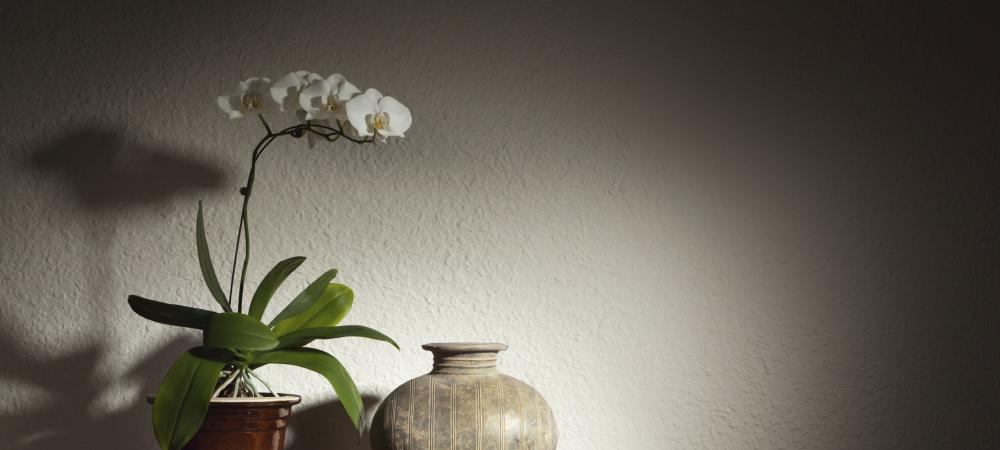 Chinesische Vase mit Orchidee