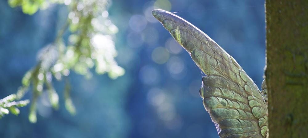 Flügel einer Engelstatue hinter einem Baum