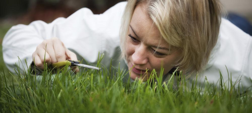 Frau schneidet Rasen mit einer kleinen Schere