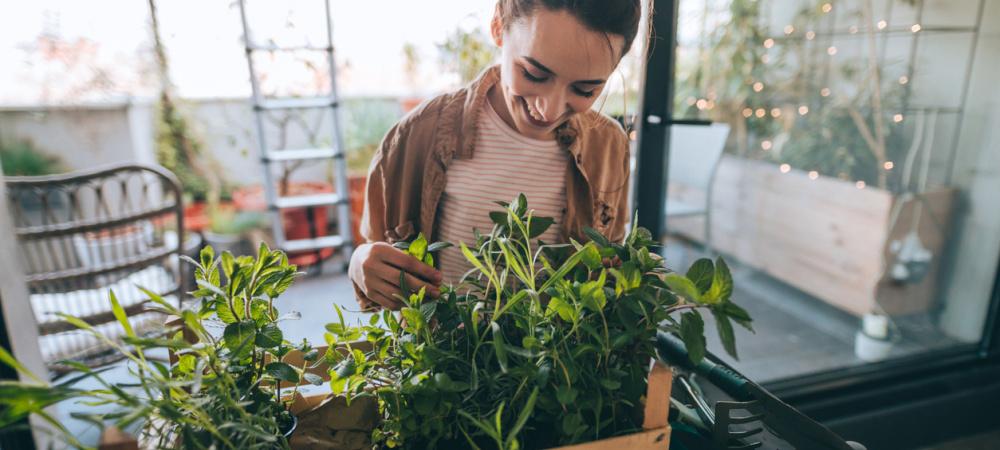 Ernährung gegen Energiemangel – Tipps von Experten