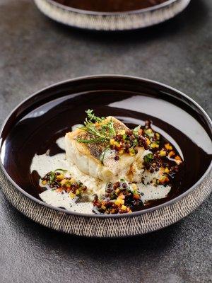 Zander auf Rieslingsauerkraut, Senfschaum und Linsen-Möhren-Salat