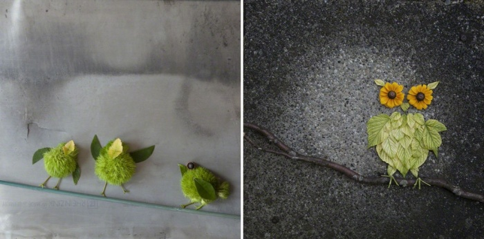 Blättertiere: Vögel