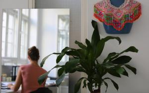 Folkdays: Büropflanze