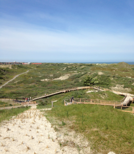 Fahrradweg durch die Dünen, Norderney