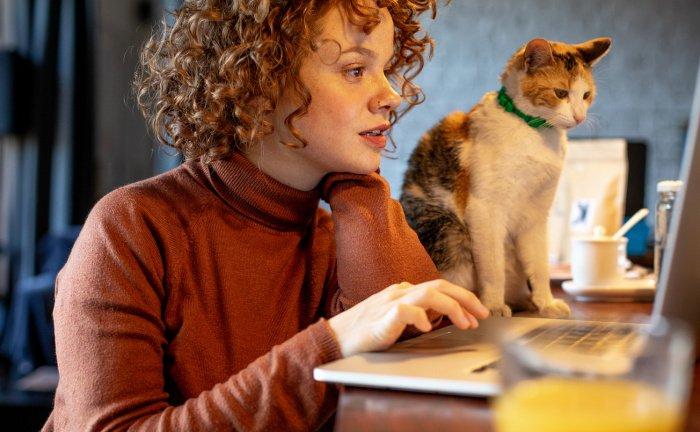 Frau am Laptop mit Katze