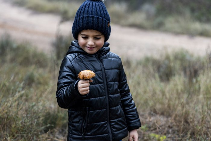 Pilze sammeln, um mit Kindern die Natur zu entdecken
