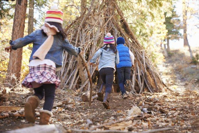 Waldhütte aus Ästen bauen