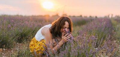 Düfte steuern Gefühle: Lavendel beruhigt
