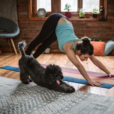 Home Workout: Warum zu Hause das bessere Fitnessstudio ist