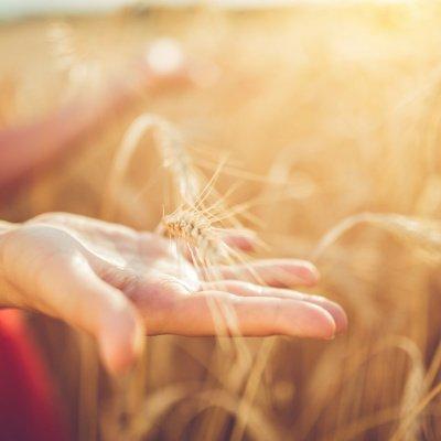Urlaub auf dem Bauernhof: Mit diesen Tipps wird es die Reise deines Lebens