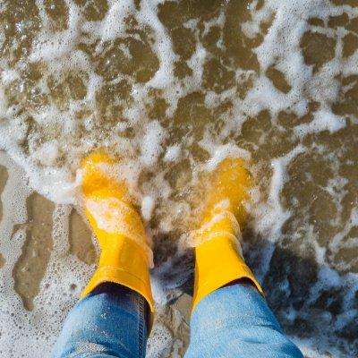 Urlaub am Wattenmeer: Niederlande